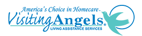 What are HHA agencies that pay high? Top 10 HHA employers: Visiting Angels